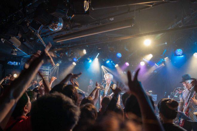 音楽ライブに特化したライブ配信チャンネル 「Cerevo LiVE!!!」を開設 ...
